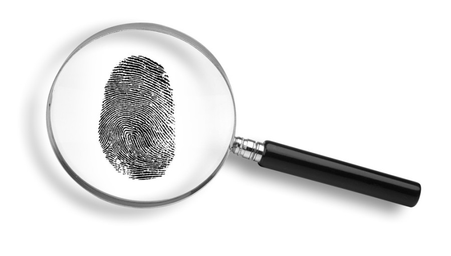 Can an Expunged Record Be Found in a Background Check?